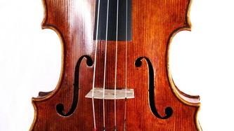 Viola nach Conte Vitale – Decke