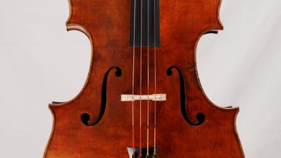 Cello nach Goffriller Decke ganz
